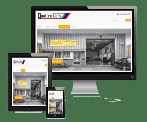 strony internetowe w holandii
